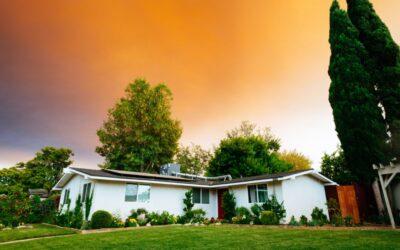 The Basics of Community Property